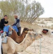marwanbenfaraj-tunis-tour-guide