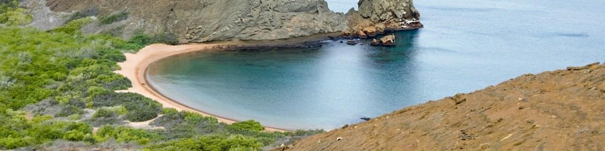 Galapagos-Sea-Star-Travel-in-Ecuador