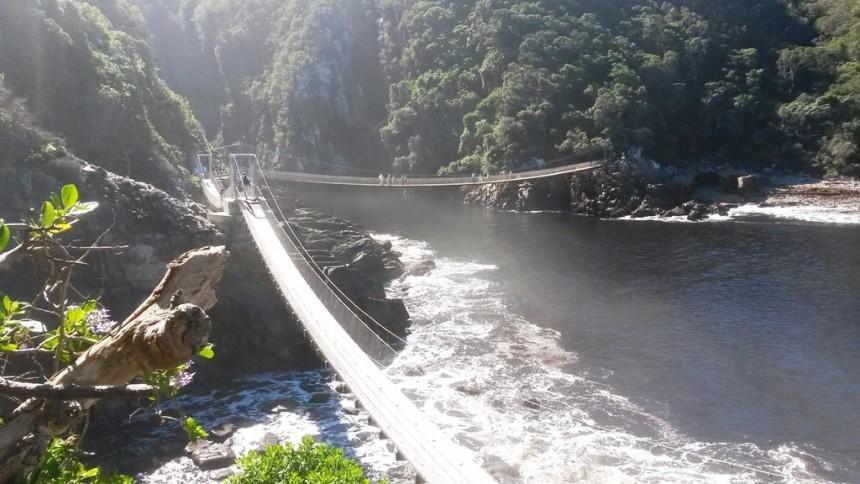 Hanging bridges at Storm's River