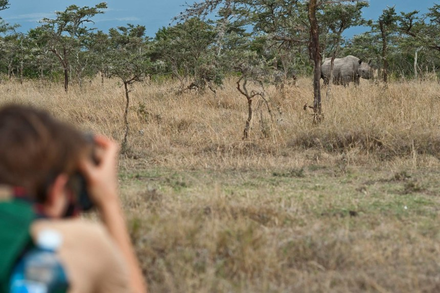 Rhino spotting while on a game drive