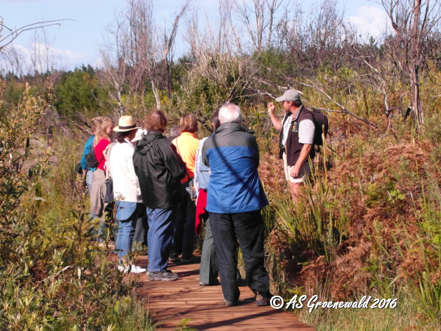 The guide explaining the details of Fynbos