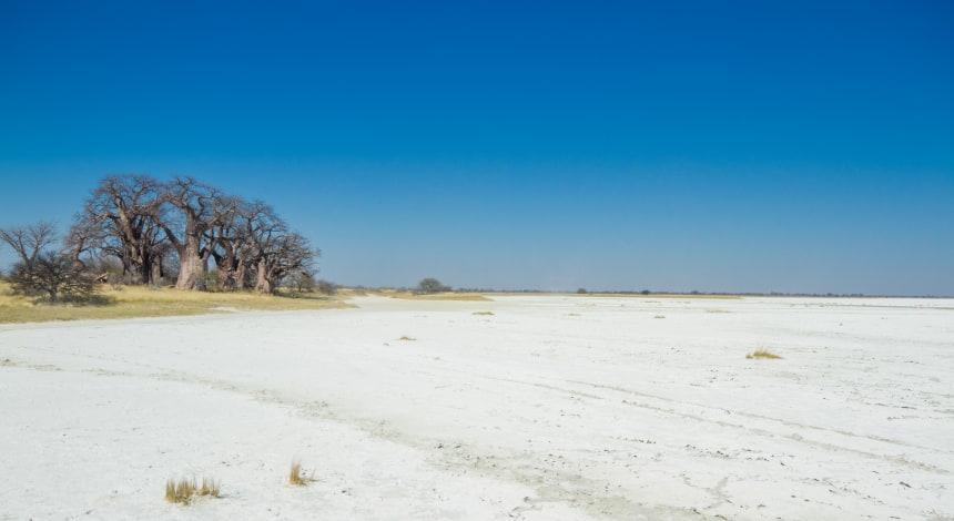 Makgadigadi Salt Pans
