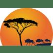 seremarasafaris-masaimara-tour-operator