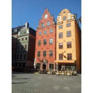aclguideservice/cristinalehnert-stockholm-tour-operator