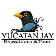 yucatanjayexpeditions&tours-valladolid-tour-operator