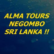 almatourssrilanka-negombo-tour-operator
