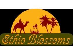 ethioblossoms-addisababa-tour-operator