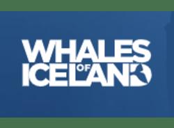 whalesoficeland-reykjavik-tour-operator