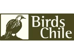 birdschile-puertovaras-tour-operator