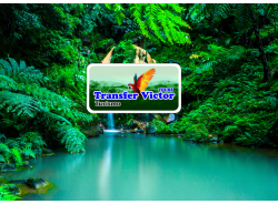 transfervictortours-manaus-tour-operator