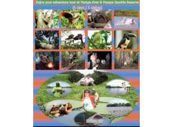 rioblancojungleexpeditions-iquitos-tour-operator