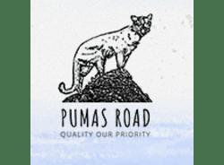 pumasroad-cusco-tour-operator
