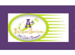 a+transportservices-bermuda-tour-operator