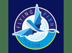 flyingfishtulum-mexicocity-tour-operator
