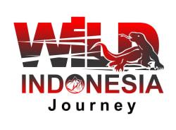 wildindonesiajourney-jakarta-tour-operator