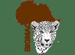 bigmacafricasafaris-nairobi-tour-operator