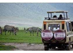professionalsafariafrica-arusha-tour-operator