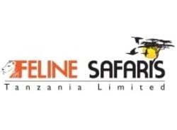 felinesafaristanzania-arusha-tour-operator