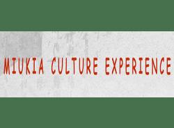 miukiacultureexperience-shanghai-tour-operator