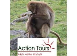actiontours-addisababa-tour-operator