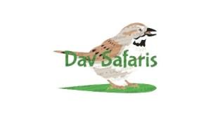 davsafaris-kampala-tour-operator