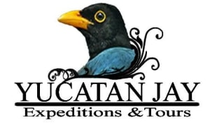 yucatanjay-valladolid-tour-operator