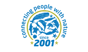 azoreswhalewatchingterraazul-sãomiguelisland-tour-operator