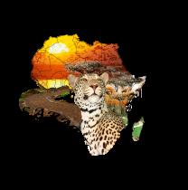 pathwaysafaris-malindi-tour-operator