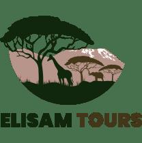 elisamtoursltd-daressalaam-tour-operator