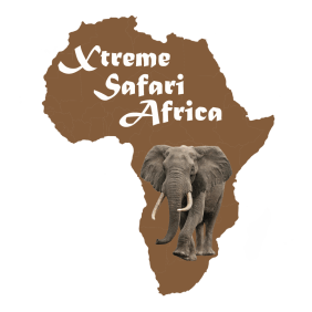 xtremesafariafrica-strand-tour-operator