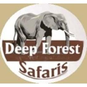 deepforestsafaris-taastrup-tour-operator