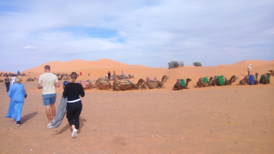 Meeting point with camel guides