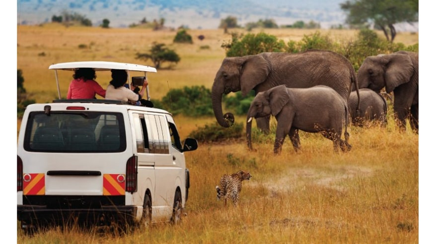 Lookout for More than just the Big Five
