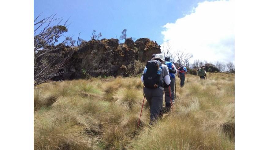 Mt Kenya hiking