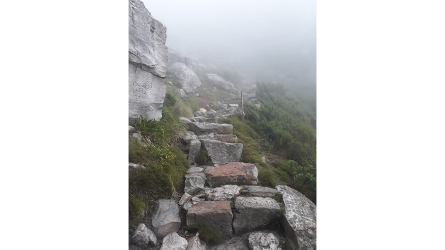 The path to the top of a very misty Table Mountain