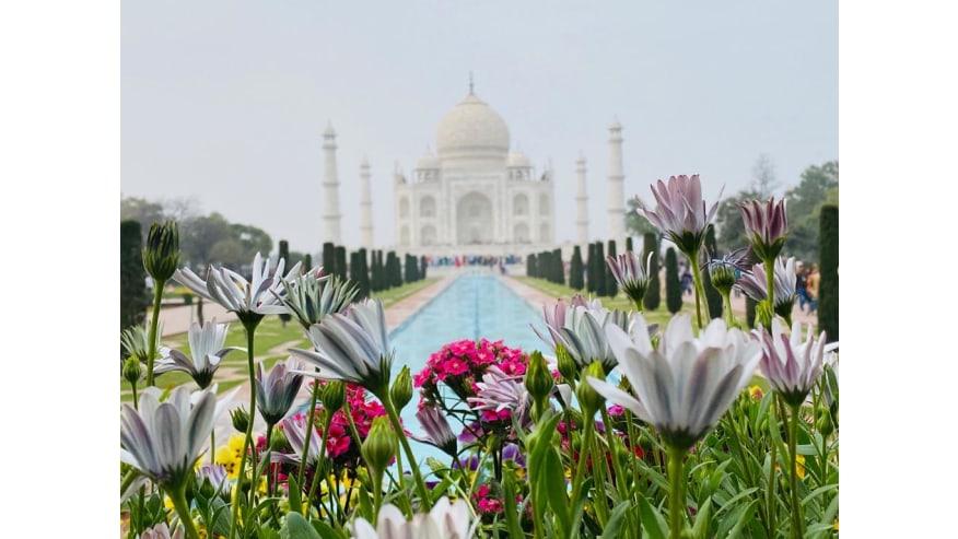 Stunning Taj Mahal