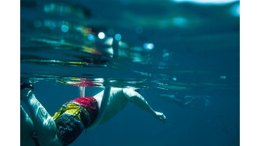 Snorkel with a guide who knows where the real action is