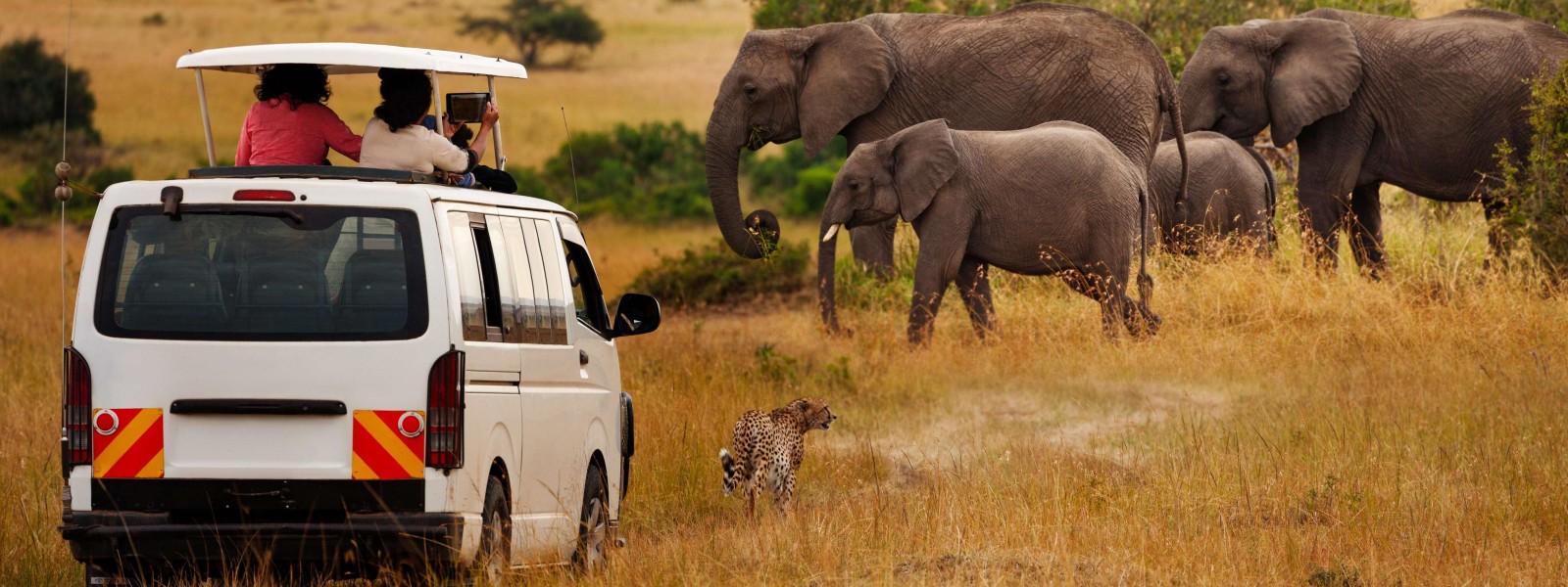 MasaiMara-Tour-Guide