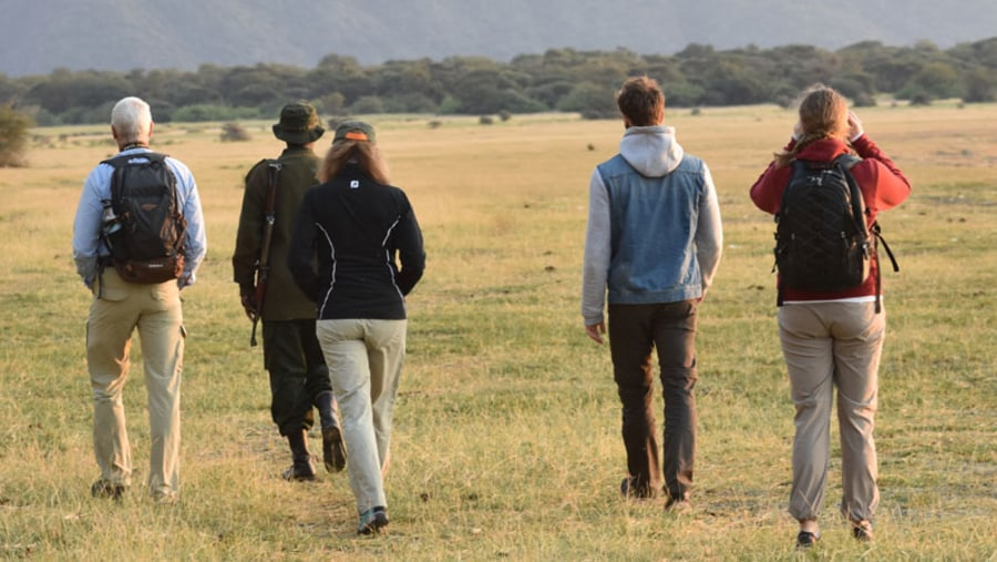 Walking Safari in Lake Manyara National Park