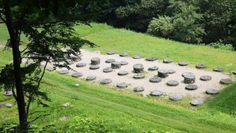Sarmizegetusa Regia - Tours in Brasov