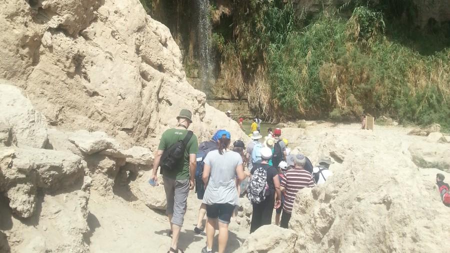 Waterfall in the oasis Ein Gedi