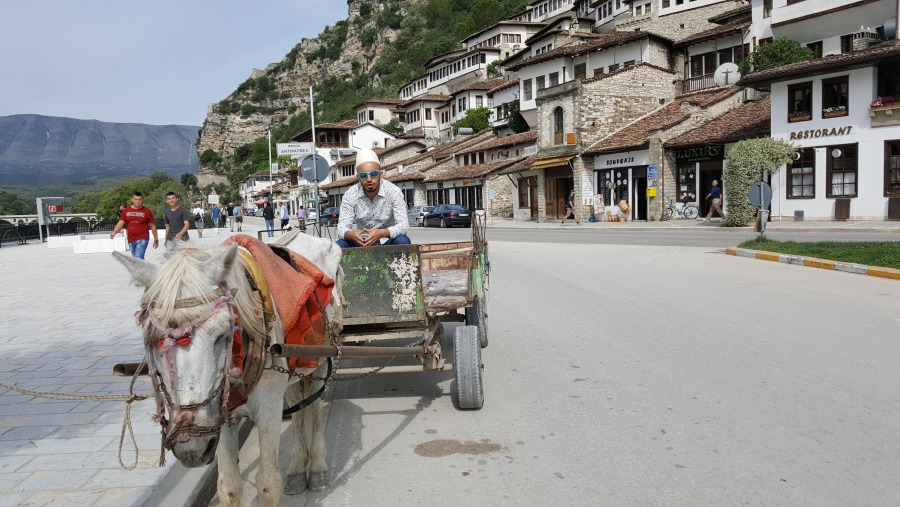 Ben brings Albania to live
