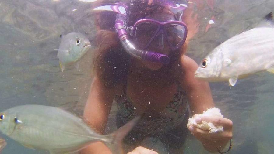 Dalana feeding the fish