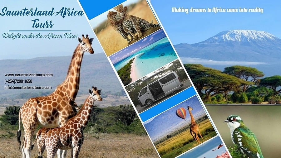 We are a your dream partner in safaris, beach holidays and mountaineering