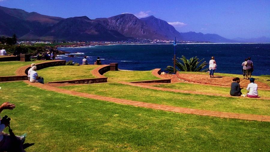 South Coast Scenic Splendour/Whale tour
