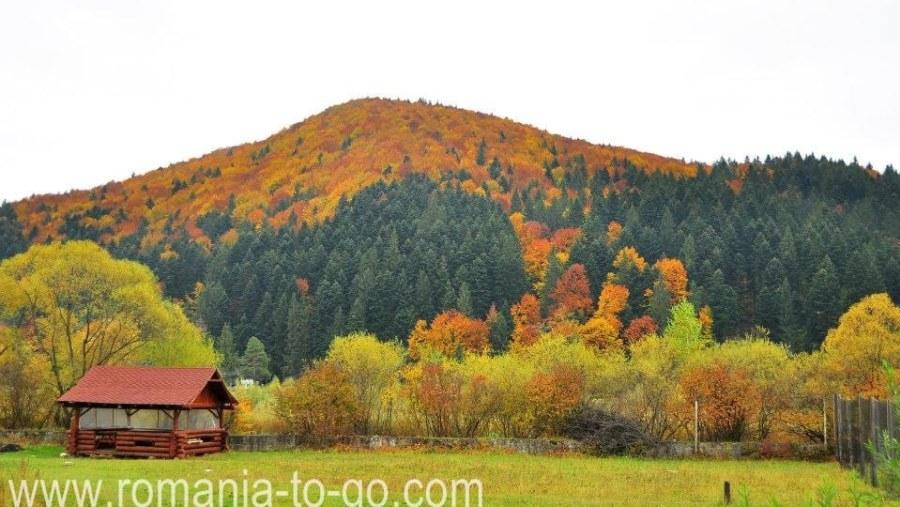 Bucovina Postcards