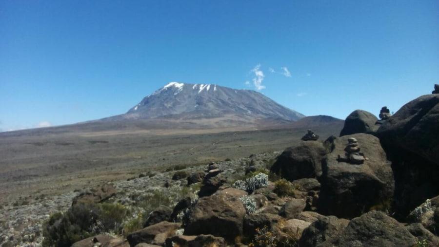Great Masai Adventure Ltd