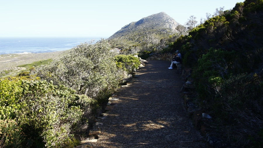 On our way to Experience the beauty of Cape Point