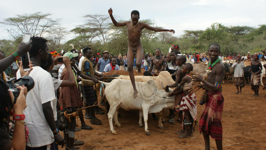 Bull Jumping Ceremony of Hammer People