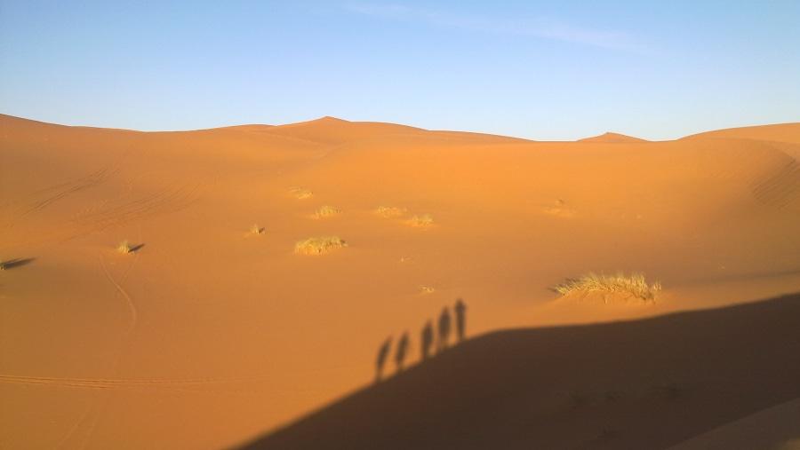 Erg chebbi, Merzouga Sahara desert